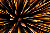Yellow Sword Fireworks Falling from the Sky Art Print