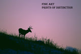 Silhouette of a Buck Deer on the Mountain at Sunset art print