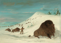 Buffalo Lancing in the Snow Drifts by George Catlin premium western print