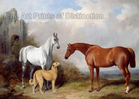 Grey, Chestnut Hunter and Deer Hound as painted by William Barraud