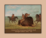 Camanches Lancing a Buffalo Bull by George Catlin premium western poster