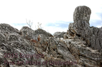 Conical Rock on top of Seneca Rock Summit Art Print