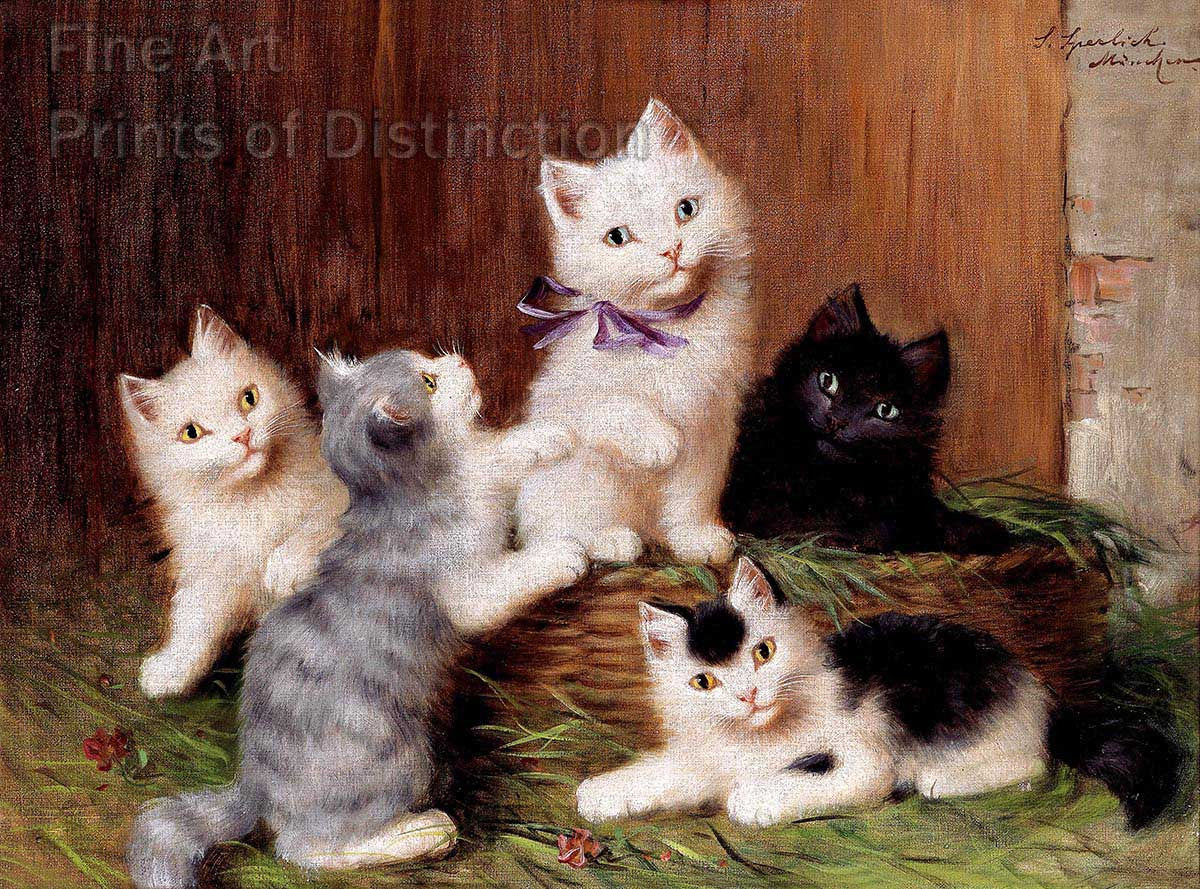 Sophie Sperlich Kittens Fine Art Animal Print Brandywine General Store