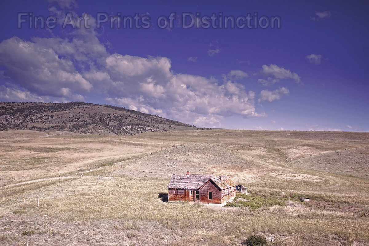 Old Homestead in the Middle of Pasture Fields in the state of Montana Art Print