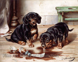 Reichert, Carl - Two Dachshunds and Drug Fine Art Canine Print