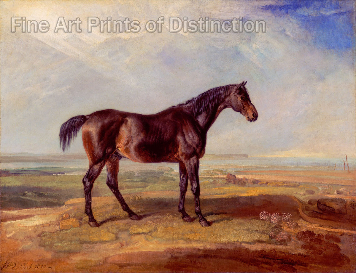 Dr. Syntax A Bay Racehorse Standing in a Coastal Landscape painted by James Ward