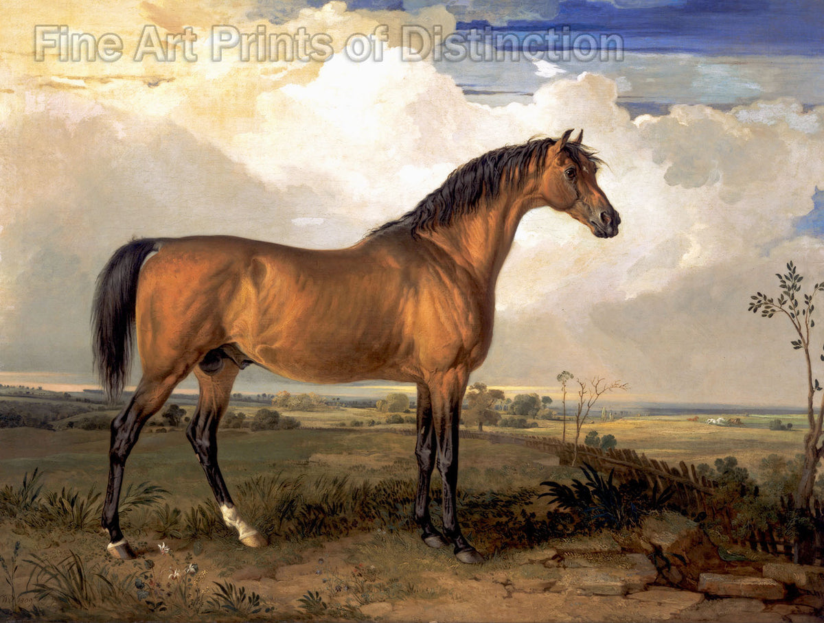Eagle A Celebrated Stallion painted by notable animal artist, James Ward