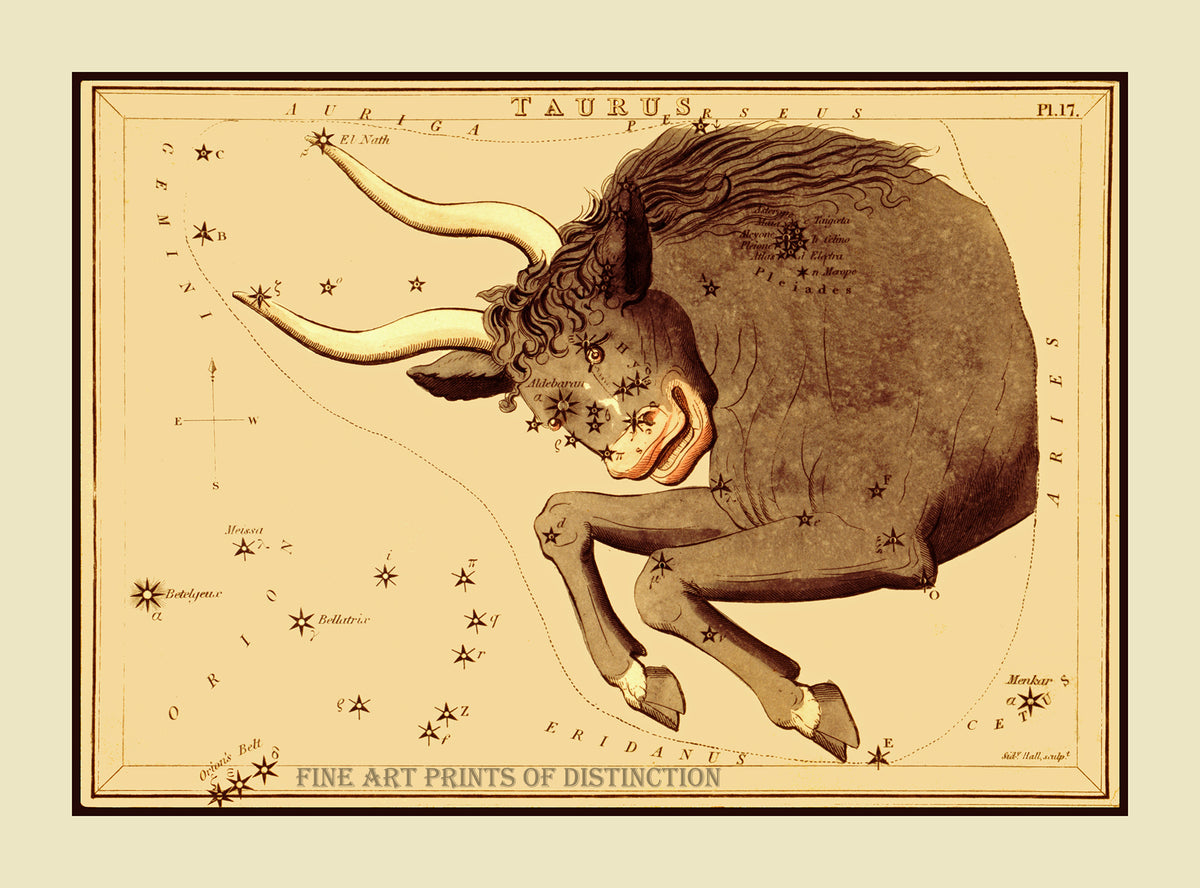Taurus Constellation by Jehoshapat Aspin showing the Bull in the sky