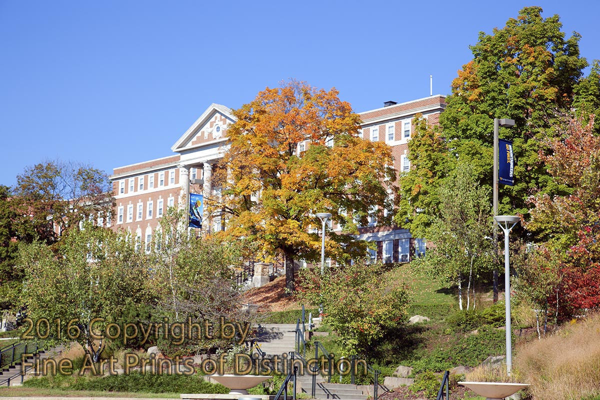 Stalnaker Hall Behind the Fall Trees at WVU
