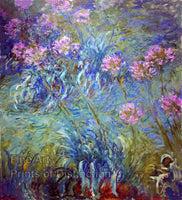 Agapanthus or Liy of the Nile by Monet Art Print