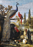 A Peacock, A Parrot, A Turkey, A rooster, A Rabbit and A Guinea Pig in a Park Landscape by David de Coninck Art Print