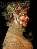The Summer by Arcimboldo Giuseppe