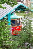 Trolley Car Hiding in the Brush at Gatlinburg Tennessee premium art print