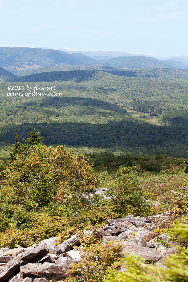 A long view of the mountainous terrain of West Virginia from the top of Spruce Knob mountain