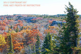 Scrub Oaks, Spruce Trees and Fall Scenery at Dolly Sods Art Print