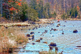 Glistening Northern Shoreline of Spruce Knob Lake Art Print