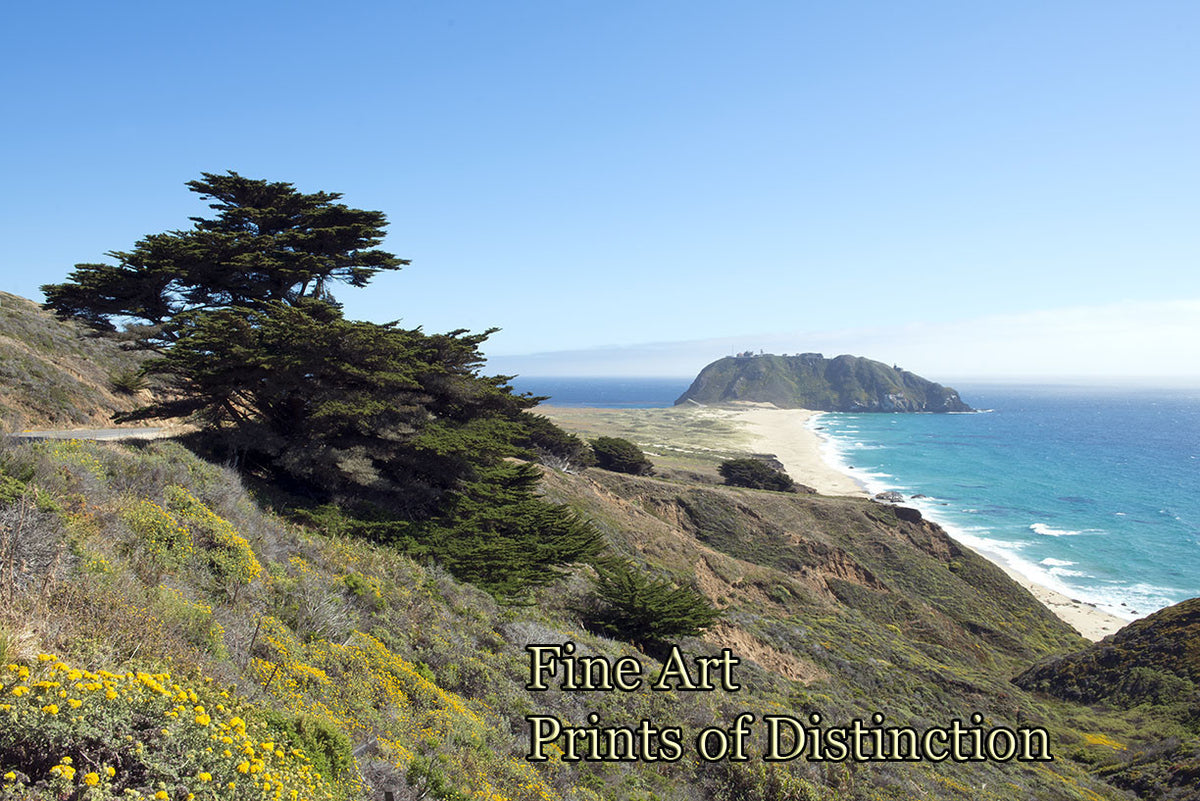 Pacific Coast Highway an Ocean View Art Print