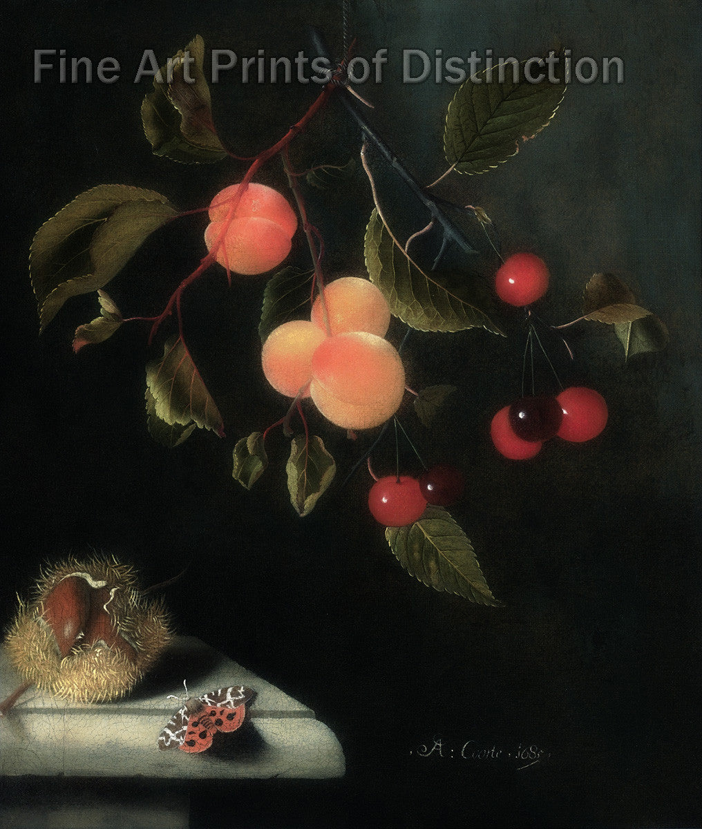 A Still Life With a Butterfly, Apricots, Cherries and a Chestnut by Adriaen Coorte