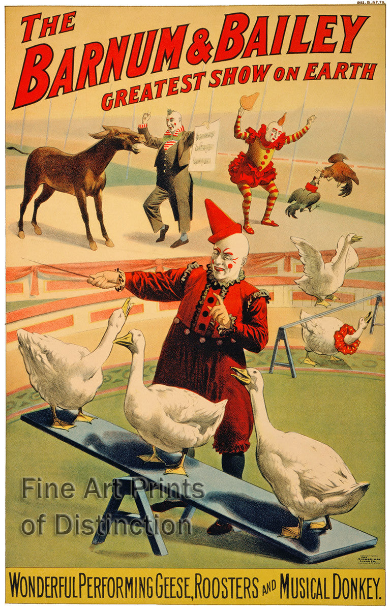 Barnum and Bailey Performing Geese, Roosters and Musical Donkey Poster