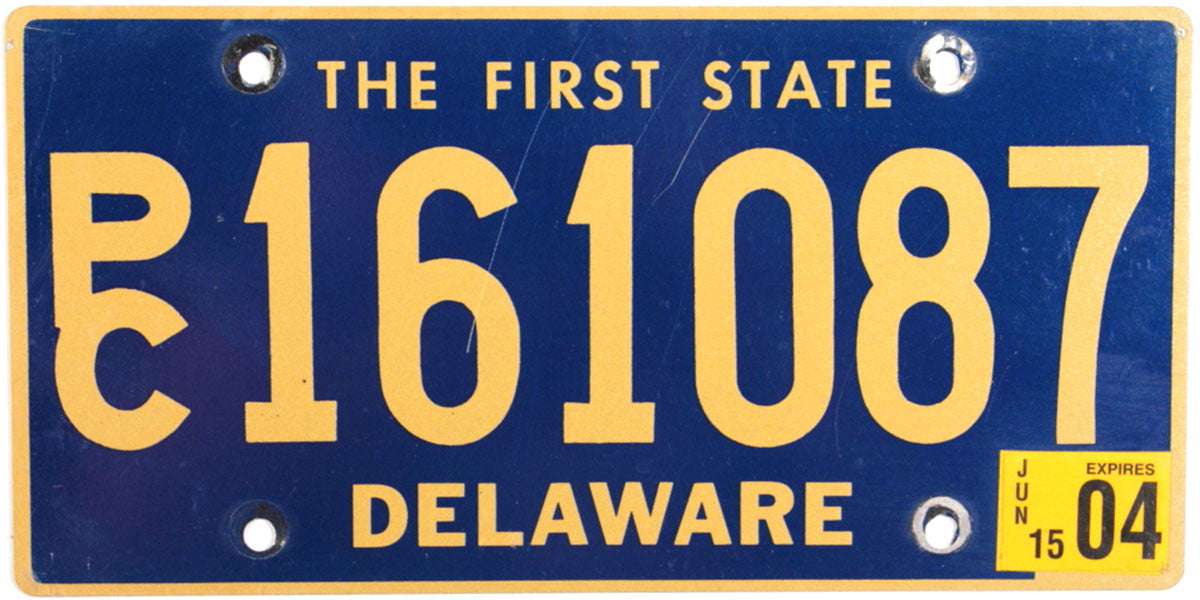 2004 Delaware Station Wagon License Plate