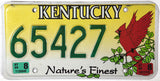1999 Kentucky Cardinal License Plate