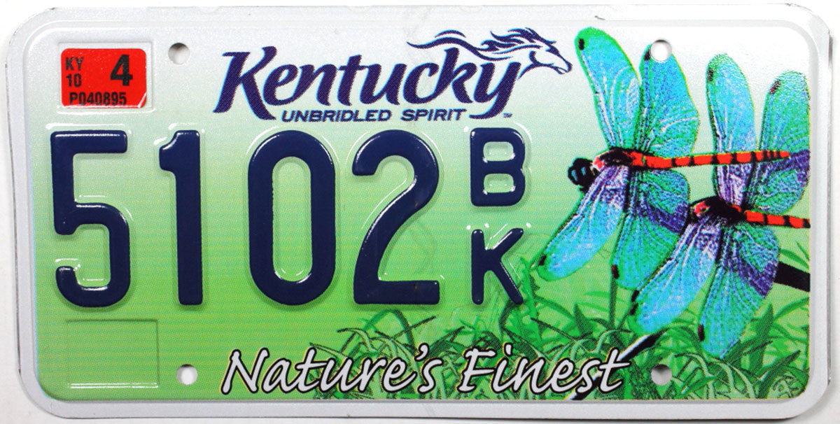 2010 Kentucky Dragonfly License Plate