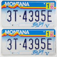 A pair of 1995 Montana Truck License Plates