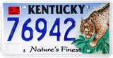 2004 Kentucky Bobcat License Plate
