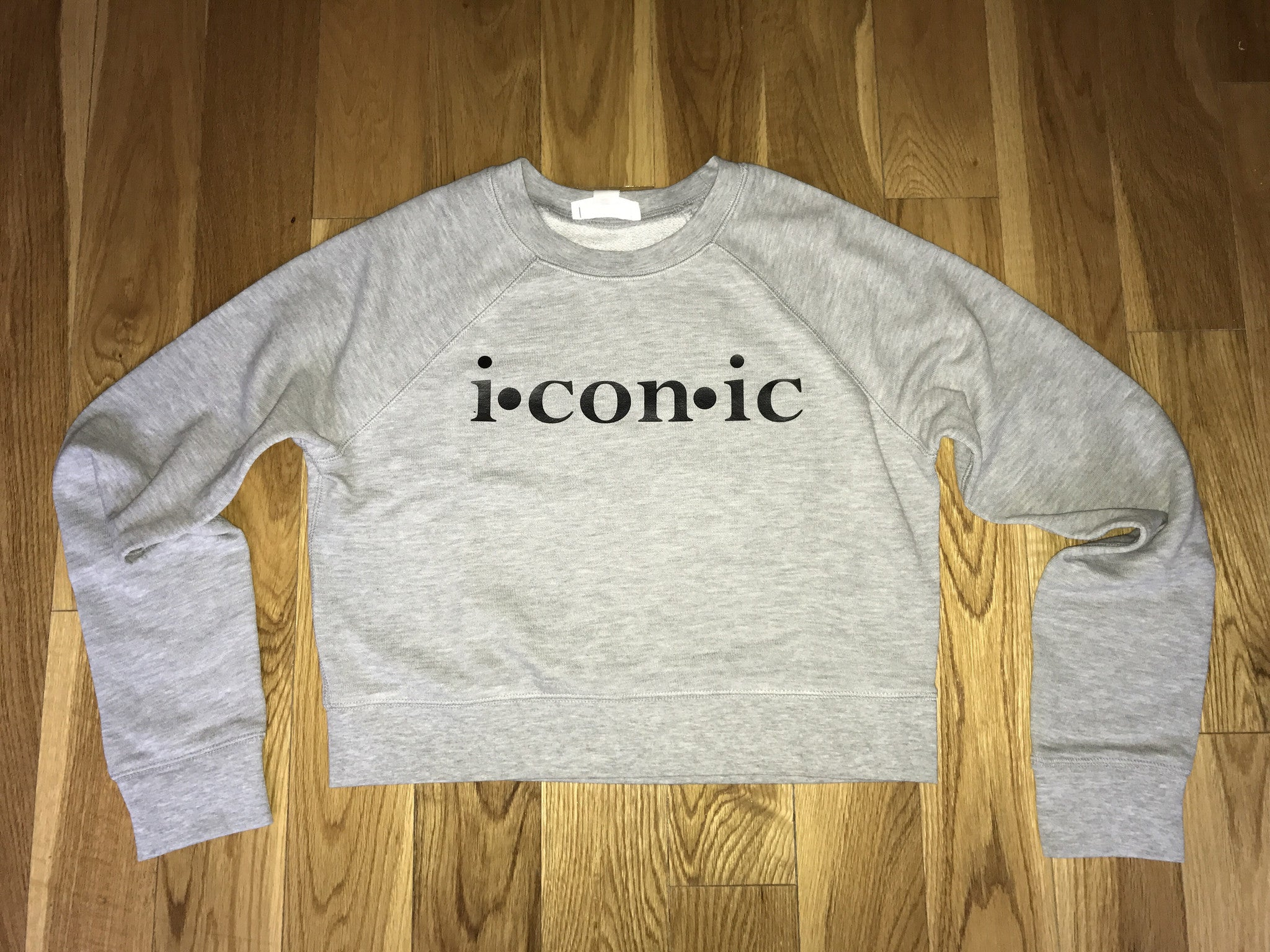 """Imaginary Player"" Crop Sweatshirt (Grey)"