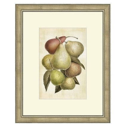 LOVELY FRUIT I - GDH | The decorators department Store