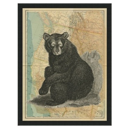 Northwest Bear - GDH | The decorators department Store