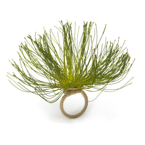 Deborah Rhodes Cypress Bloom Napkin Ring S/6 - GDH | The decorators department Store