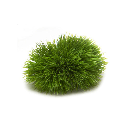 Deborah Rhodes Moss Grass Napkin Ring S/6 - GDH | The decorators department Store