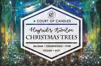 Hagrid's Twelve Christmas Trees - Soy Candle