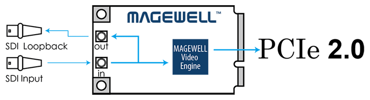 Magewell Pro Capture Mini SDI