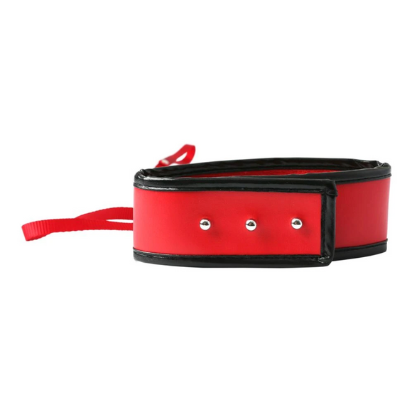 S&M Red Leash and Collar