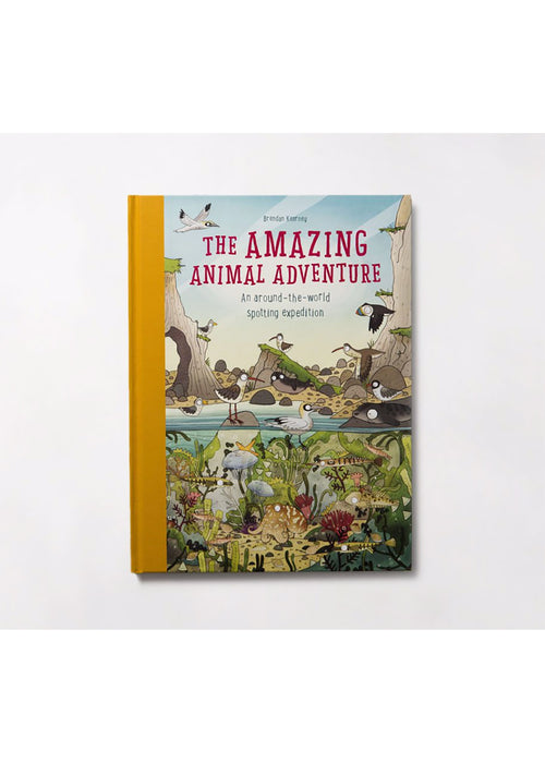 The Amazing Animal Adventure: A Spotting Book
