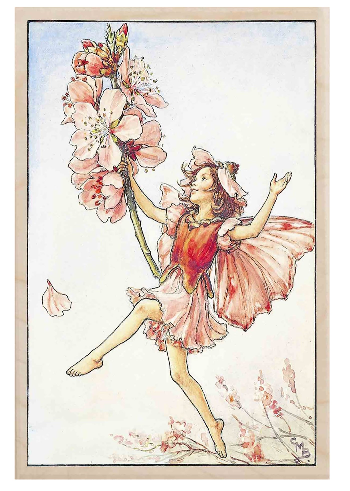The Wooden Postcard Almond Blossom Fairy Card