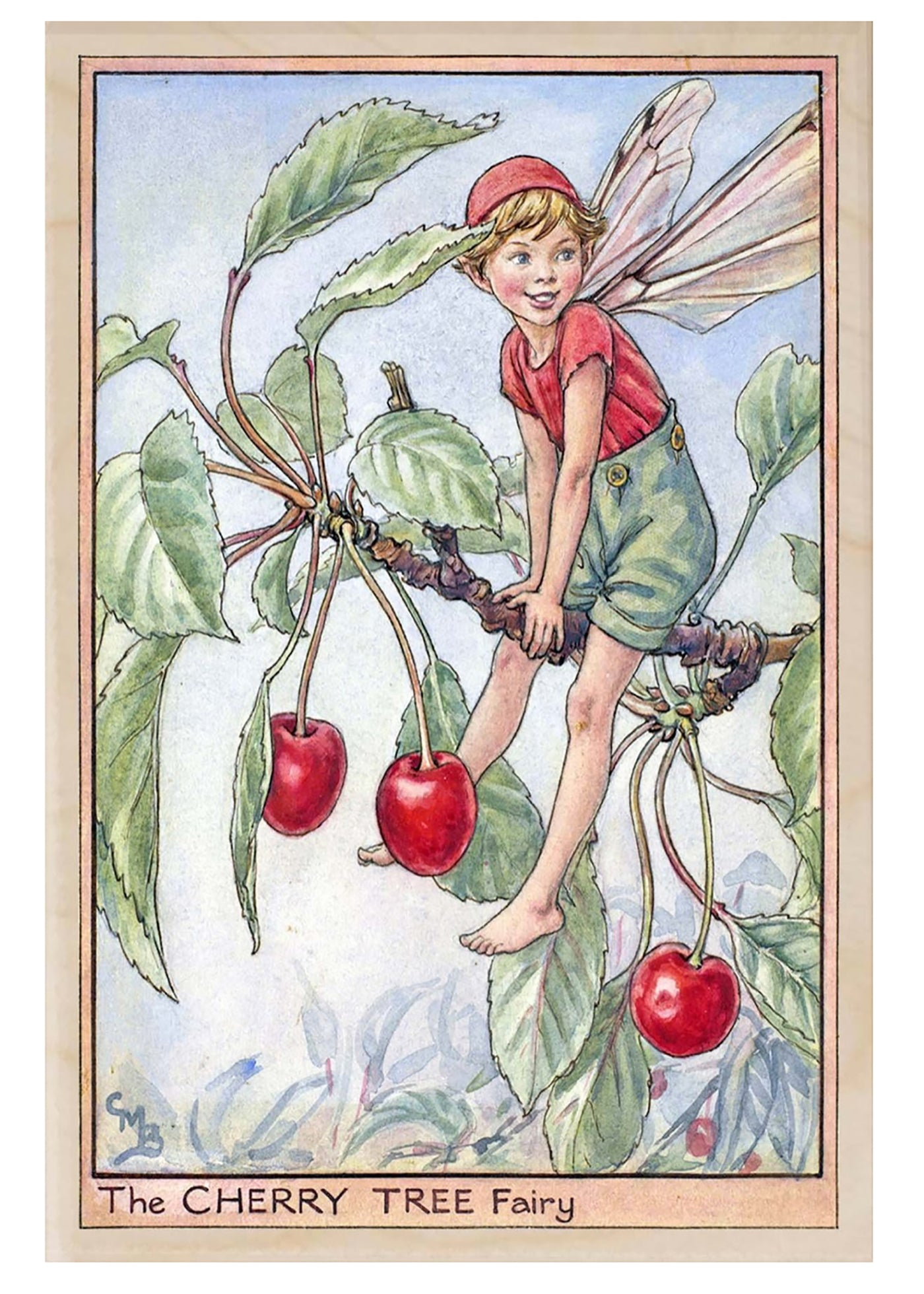 The Wooden Postcard Cherry Tree Fairy Card