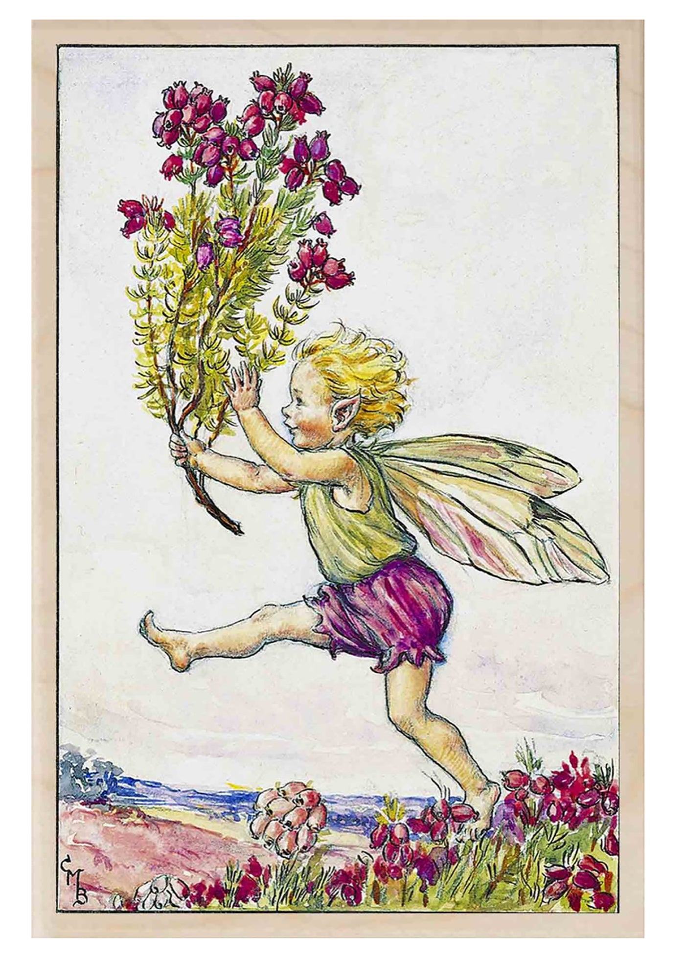 The Wooden Postcard The Heather Fairy Card