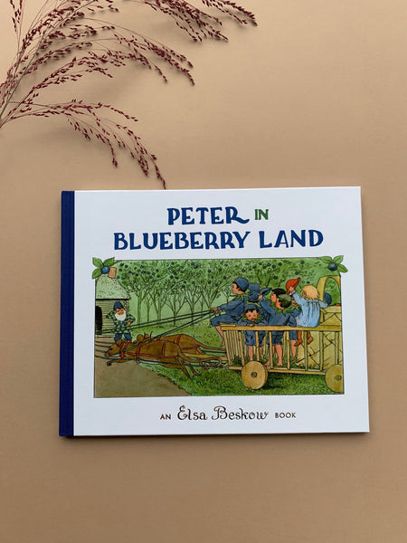 Peter in Blueberry Land (Hardcover) by Elsa Beskow