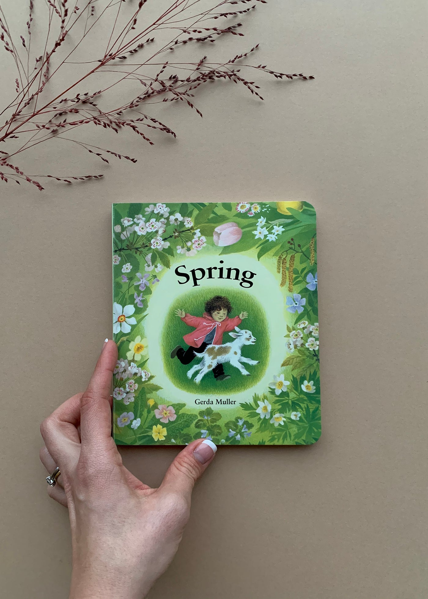 Spring by Gerda Muller (Board Book)