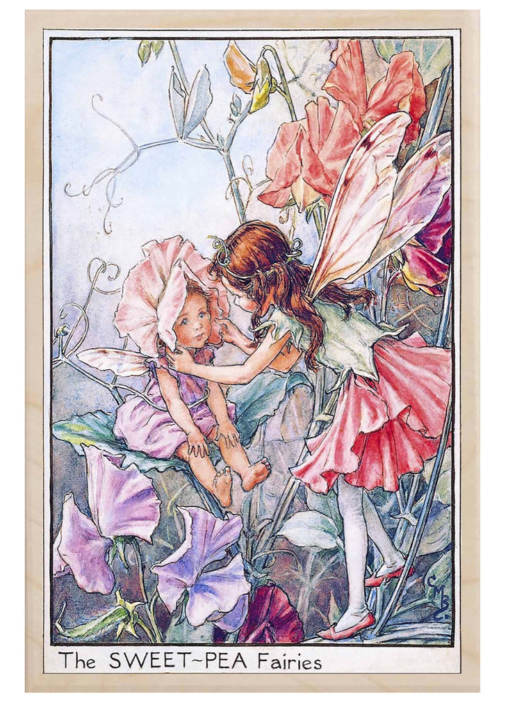 The Wooden Postcard Sweet Pea Fairies Card