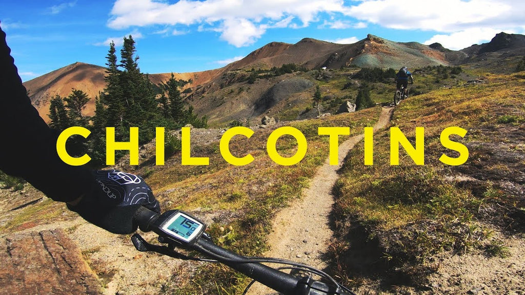 Exploring the Chilcotins with Wildlife Photographers