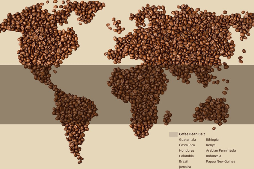 coffee bean map.