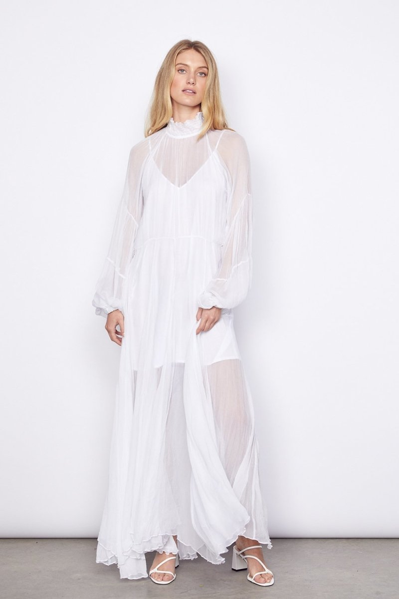 Aarons Silk Chiffon Gown