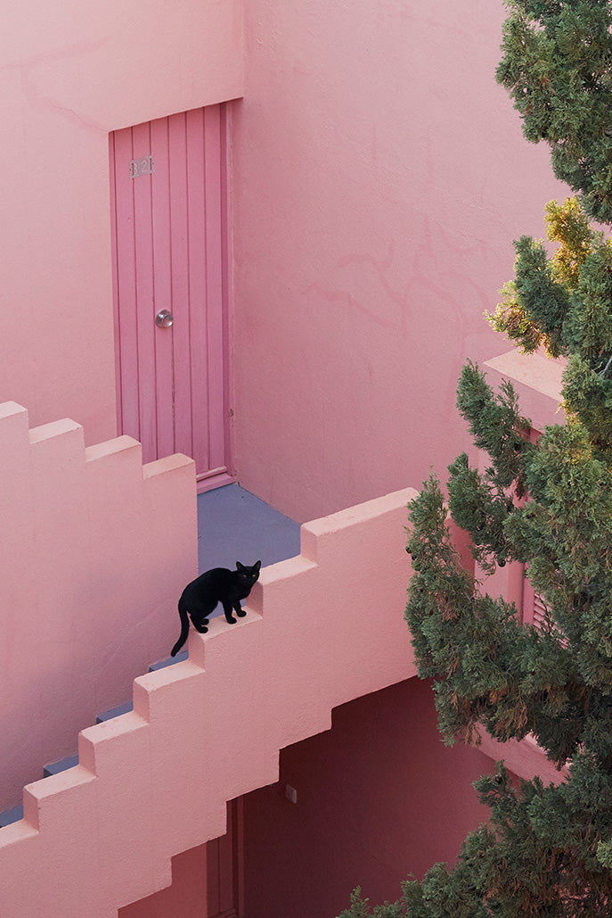MLM LABEL WALLCANDY PLACES TO GO LA MURALLA ROJA