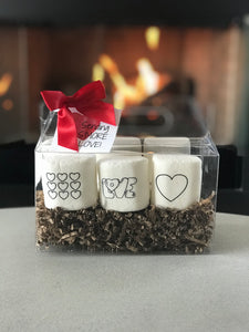 Paint Your Own S'more Gift Set