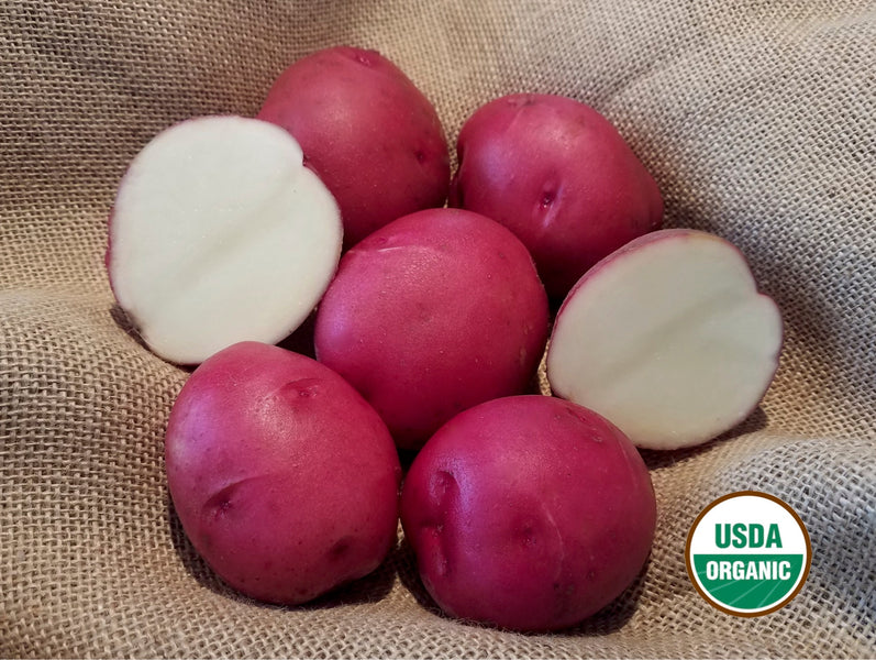 Announcing NEW! DOUBLE Certified Seed POTATOES!!