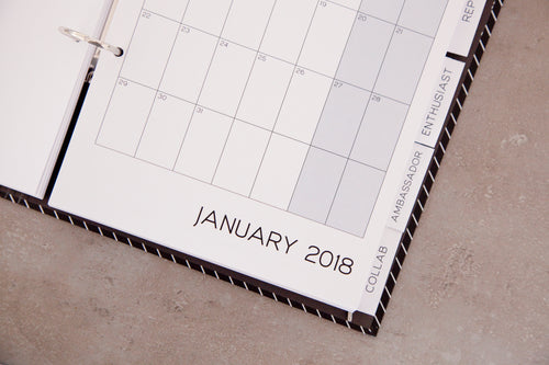 Fillable Brand Rep Diary Pages only (2 Free months)
